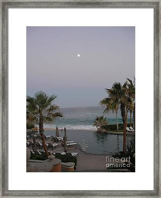 Cabo Moonlight Framed Print by Susan Garren
