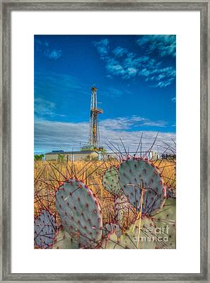 Cac008-8r124 Framed Print by Cooper Ross
