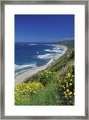 Cachagua Coastline Chile Framed Print