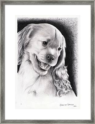 Cachorro - Puppy Framed Print