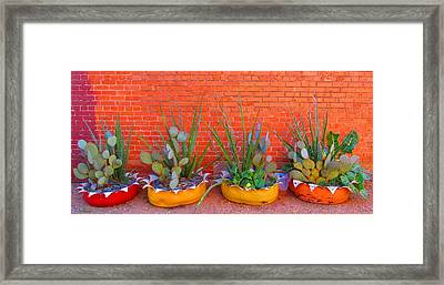 Cacti Quartet Framed Print by Alec Drake