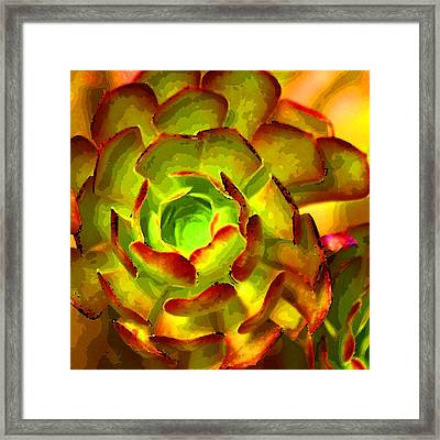 Cactus Abstract Framed Print by Art Block Collections