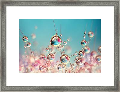 Cactus Candy Framed Print by Sharon Johnstone