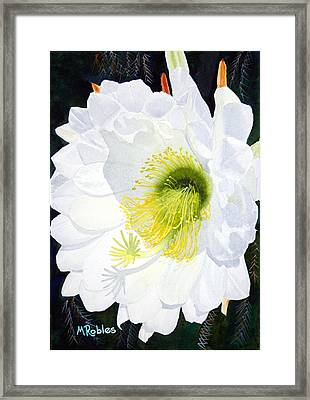 Cactus Flower II Framed Print by Mike Robles