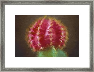 Cactus Flower Textured Painted In Digital Framed Print by David Haskett