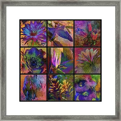 Cactus Flowers Framed Print by Barbara Berney