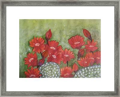 Cactus Flowers Framed Print by Usha Rai