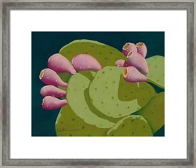 Cactus Fruit Framed Print
