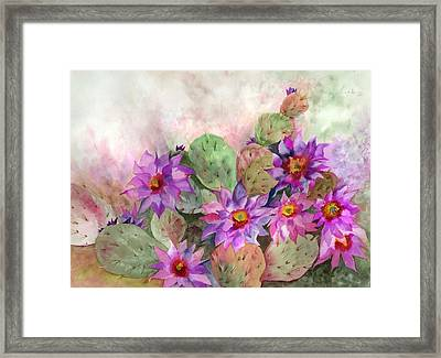 Cactus Garden Framed Print by Neela Pushparaj