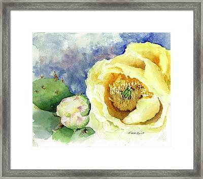 Cactus In Bloom Framed Print