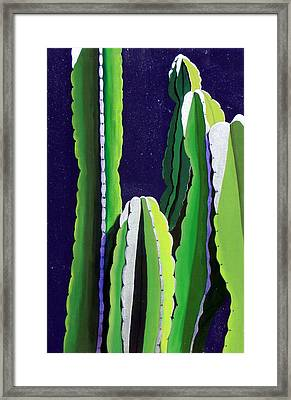 Cactus In The Desert Moonlight Framed Print