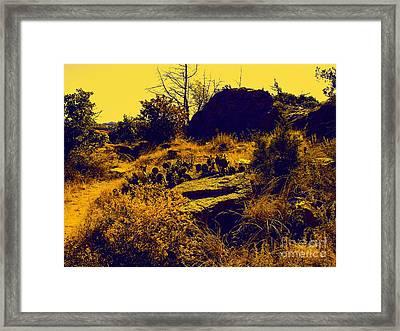Cactus Framed Print by Mickey Harkins