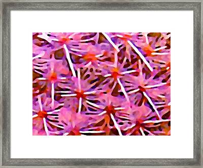 Cactus Pattern 2 Pink Framed Print by Amy Vangsgard