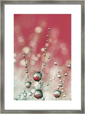 Cactus Sparkles In Pink Framed Print by Sharon Johnstone
