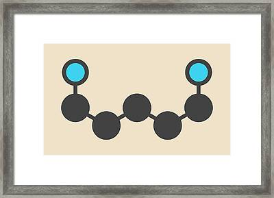 Cadaverine Foul Smelling Molecule Framed Print