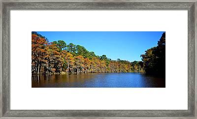 Caddo Lake 1 Framed Print by Ricardo J Ruiz de Porras