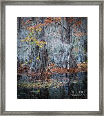 Caddo Lake Fall Framed Print