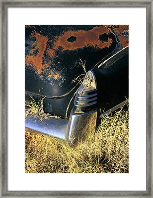 Caddy Tail Fin Framed Print