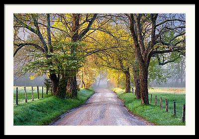 Country Dirt Roads Photographs Framed Prints