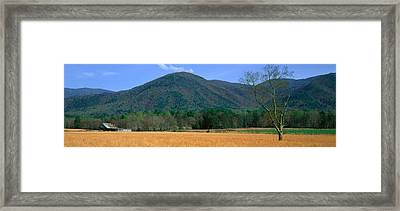 Cades Cove Pioneer Settlement, Great Framed Print by Panoramic Images