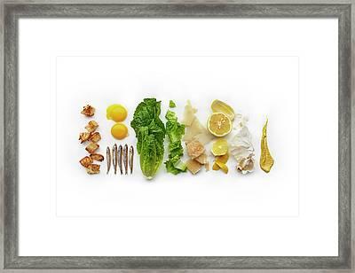 Caesar Salad Ingredients Framed Print by Lew Robertson