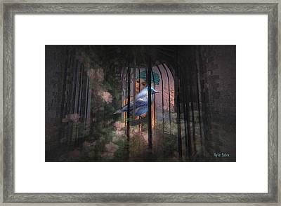 Caged Bird Framed Print by Kylie Sabra
