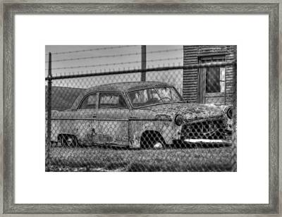 Caged Framed Print by Thomas Danilovich