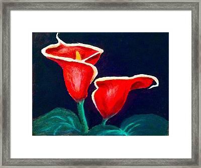 Cala Lilly Framed Print