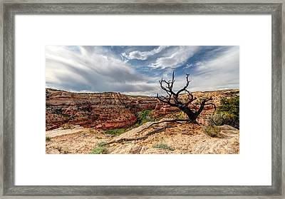 Calf Creek Framed Print by Dustin  LeFevre