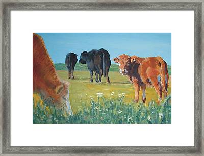 Calf Painting Framed Print