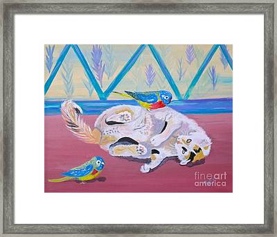 Calico And Friends Framed Print by Phyllis Kaltenbach