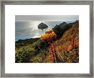 California - Big Sur 006 Framed Print