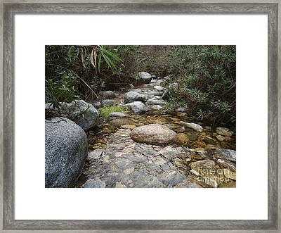 California Canyon 11 Framed Print by Drew Shourd