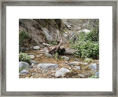California Canyon 14 Framed Print by Drew Shourd