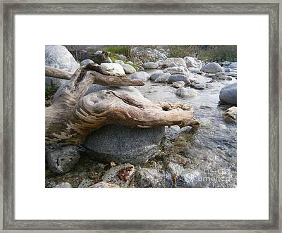 California Canyon 19 Framed Print by Drew Shourd