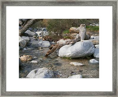 California Canyon 21 Framed Print by Drew Shourd