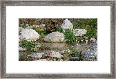 California Canyon 23 Framed Print by Drew Shourd