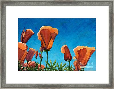 California Closeup Framed Print