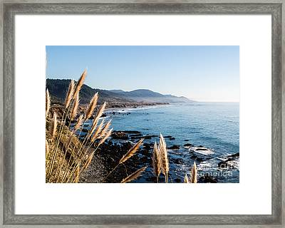 California Coast - 521 Framed Print by Stephen Parker