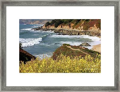 California Coast Overlook Framed Print by Carol Groenen