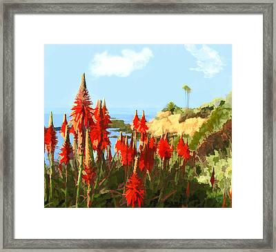 California Coastline With Red Hot Poker Plants Framed Print by Elaine Plesser