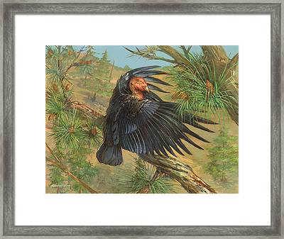 California Condor Framed Print by ACE Coinage painting by Michael Rothman