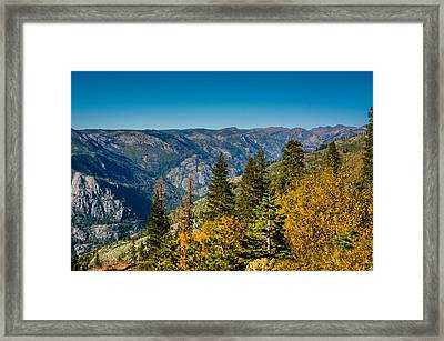 California Fall Framed Print
