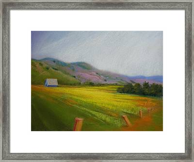 California Field In May  Framed Print
