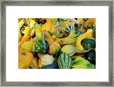 California Fruit Stand Autumn Harvest Framed Print