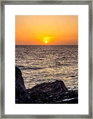 California Gold Framed Print by April Reppucci