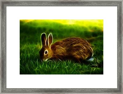 California Hare - 0291 Framed Print by James Ahn
