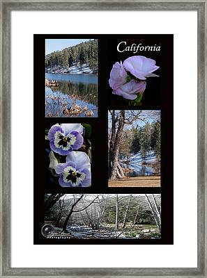California Framed Print by Ivete Basso Photography