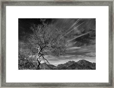 Framed Print featuring the photograph California Landscape 1 by Jim Vance