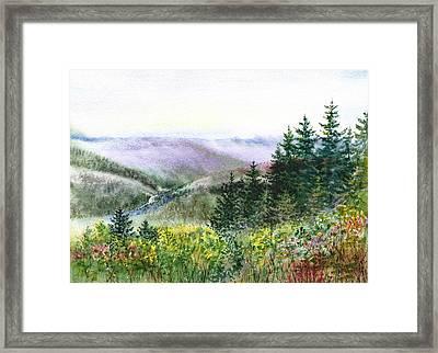 Redwood Creek National Park Framed Print